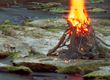 Controlled Burns and The Water Below Thumbnail