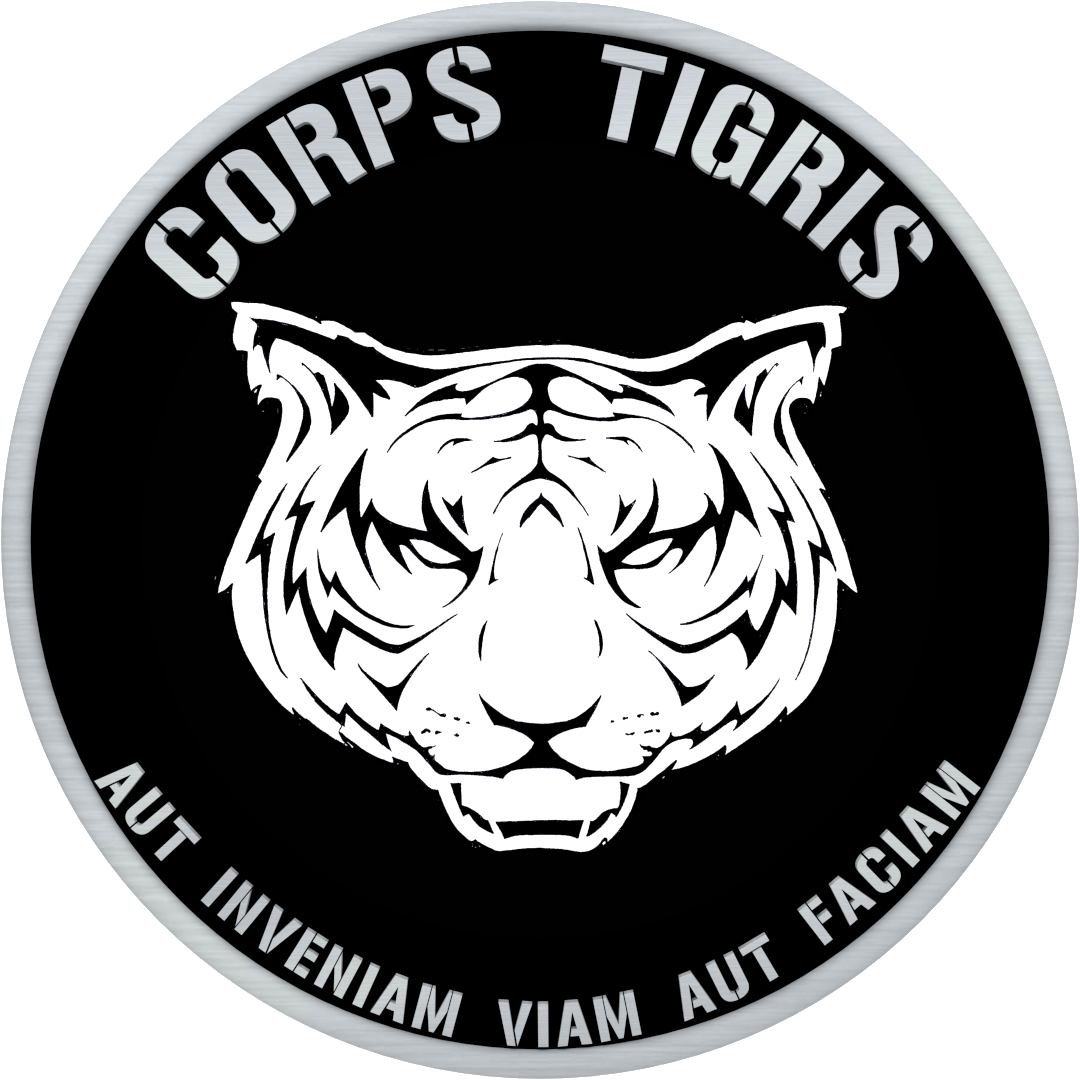 TIGER TEAM LOGO