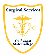 Surgical Services Patch