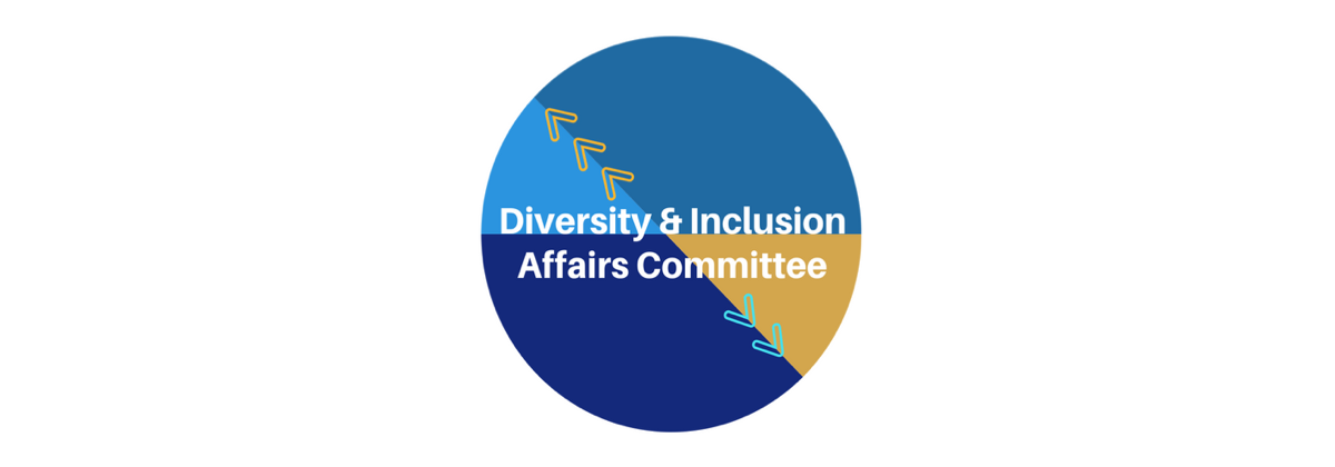 Diversity and Inclusion Affairs Committee